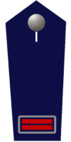 Oberbrandmeister/-in